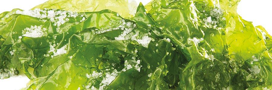 Algas en salazón - Suralgas