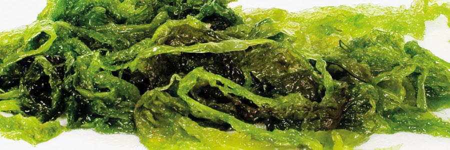Aonori verde - Suralgas