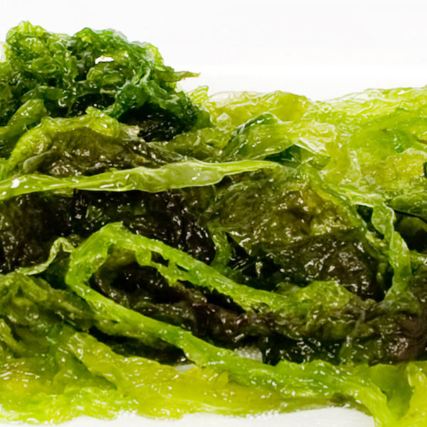 aonori-verde_square